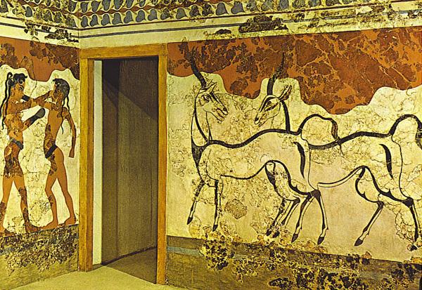 freska-kozy-boks