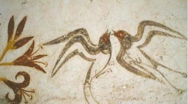 freska-lastochki