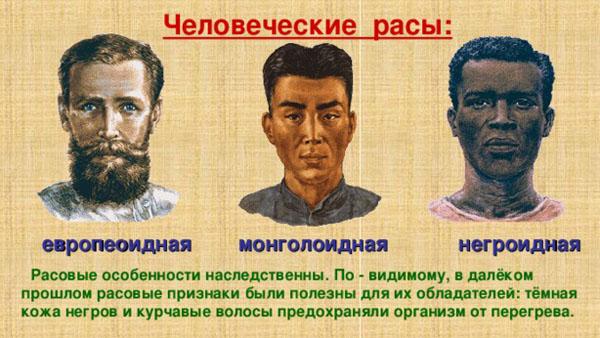 Монголоидная раса человека реферат 1642