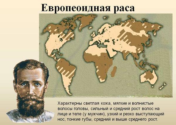 Картинки по запросу раса европеоидная